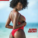 Ari Perez MicroMAG - Aubri Ebony 23