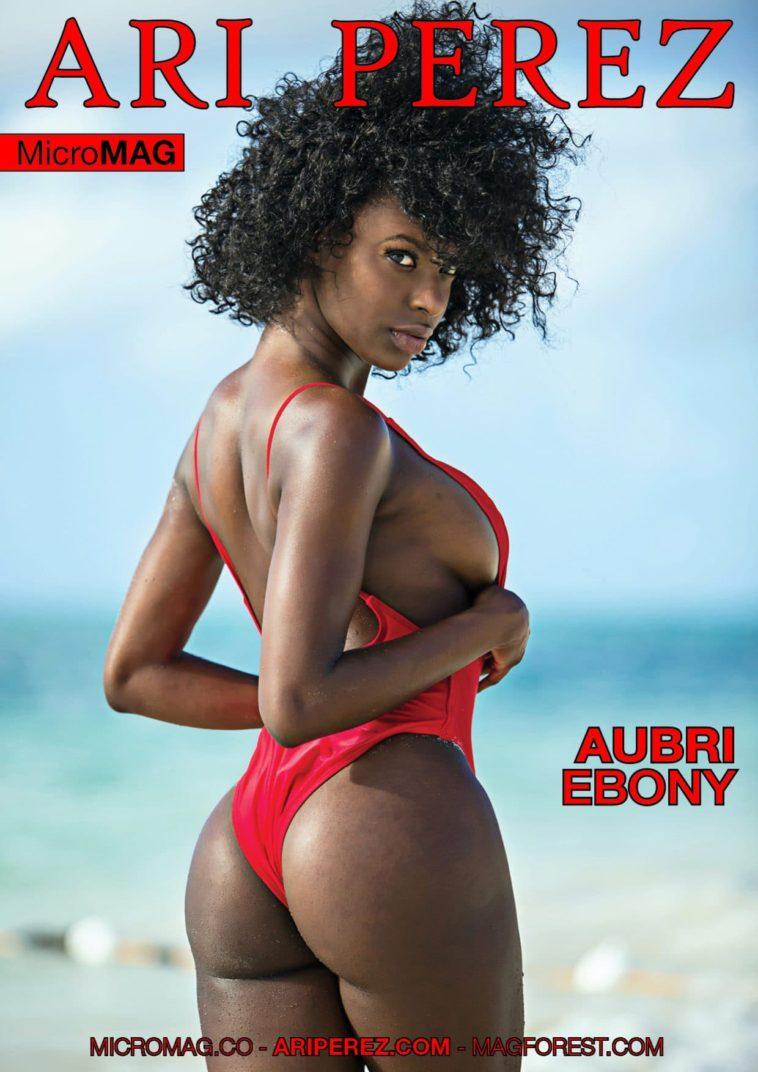 Ari Perez MicroMAG - Aubri Ebony 1