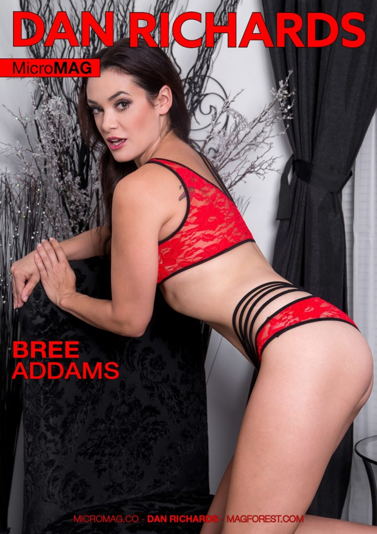 Dan Richards MicroMAG - Bree Addams - Issue 2 1